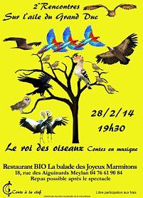 roi_oiseaux_s